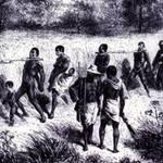 Témoignage d'un esclave